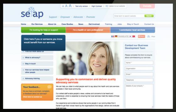 SEAP website page design